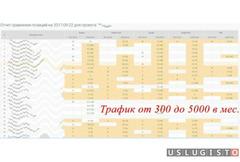 SEO оптимизатор/ Директолог Москва