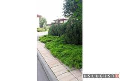 Садовник, уход за садом, дендролог агроном Москва