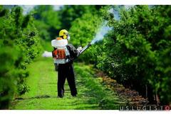 Весенняя обработка растений от вредителей Москва