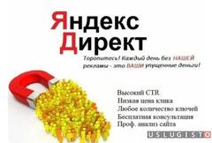 Настройка Яндекс. Директ под ключ + ведение Москва