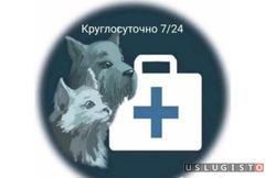 Ветеринарный врач с выездом на дом Москва