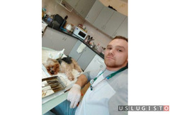 Кастрация, Стерилизация,вакцинация на дом Москва
